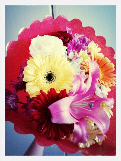 Flowers *.*