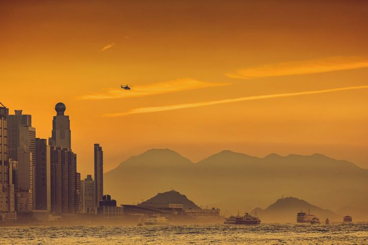 Victoria Harbor Sunset Glow Dusk In The City Victoria Harbor Hong Kong Sunset Bird Flying Mountain Architecture Outdoors Built Structure City