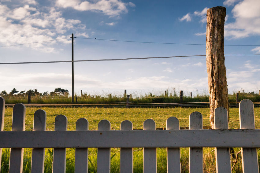 Fences frame the meadows. Agriculture Beauty In Nature Cloud - Sky Day Fence Field Frame Landscape Meadow Nature No People Nusshain 06 17 Outdoors Power Line  Rural Scene Sky Tree Utility Pole
