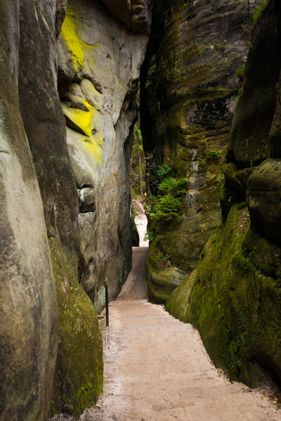 Adršpach Adršpachské Skály Day Nature No People Outdoors Rock - Object The Way Forward