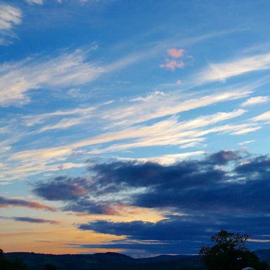 Sun gone for another day. Sunsets Sun Uk Oswestry Clouds Instaclouds Instadaily Silhouette Tree Naturelover Nature