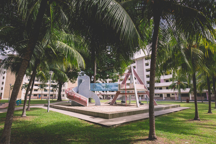 Dove Playground Absence Built Structure Concrete Playground Dakota Crescent Day Empty Grass Green Color Growth Lawn Nature No People Old Playground Outdoors Palm Tree Plant Playground Sky Sunlight Tranquility Travel Destinations Tree Tree Trunk #urbanana: The Urban Playground