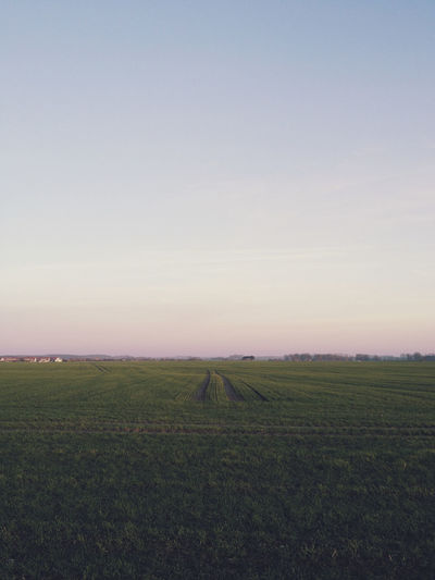 Scenic view of fields against clear sky