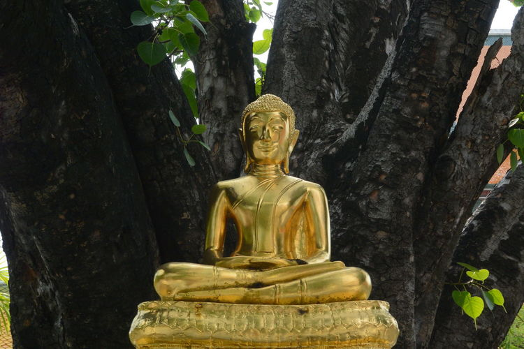 Gold statue of buddha against tree
