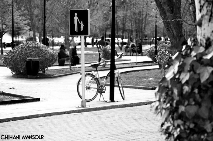 What did you do to save the world today ? #ecology #bike #people #greenspace @unicef #UNICEF #save #the #world #stay #eco #photography #photooftheday #panel #leaves #responsibility #ifrane #morocco