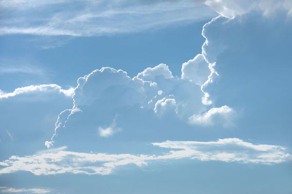 Atmosphere Atmospheric Mood Backgrounds Beauty In Nature Blue Cloud Cloud - Sky Cloudscape Cumulus Cloud Day Fluffy Full Frame Heaven Low Angle View Majestic Meteorology Nature Outdoors Scenics Sky Sky Only Softness Tranquil Scene Tranquility Vibrant Color