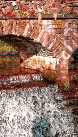 Small Bridge Small Bridge In The Woods Red Water River Of Blood Arid Climate Full Frame Red