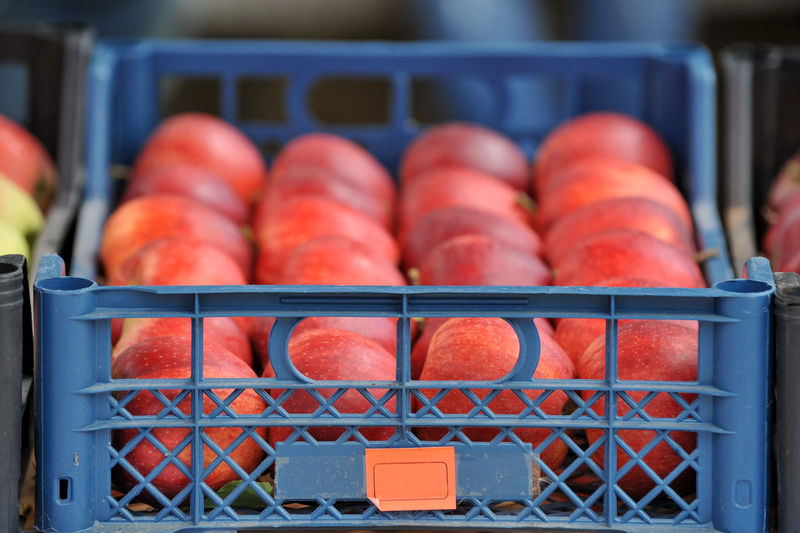 Close-up of vegetables in crate