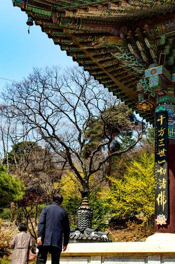 Rear view of people walking in temple