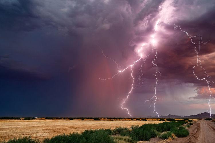 Dramatic lightning bolts strike from a monsoon thunderstorm at sunset near tucson, arizona.