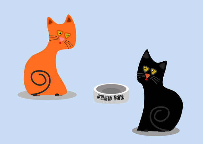 Hungry orange and black cats want to feed them Studio Shot Animal Themes Animal Mammal No People Representation Animal Representation Domestic Animals Communication Feline Art And Craft Still Life Orange Color Cat Domestic Cut Out Copy Space One Animal Nature Creativity Kittens Hungry Cat Cute Cats Cute Pets