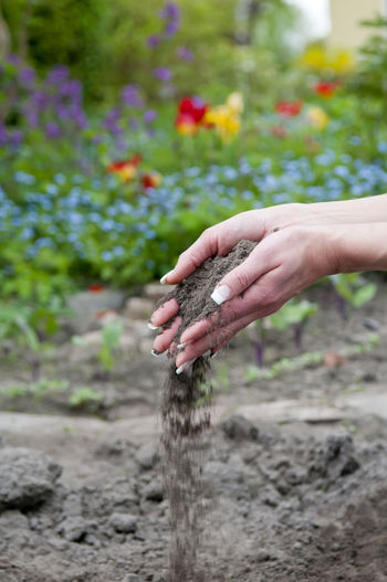 Cropped hands of woman spilling dirt
