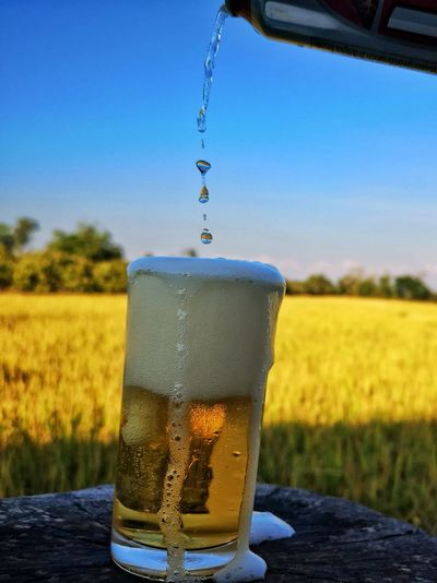 Close-up of beer glass on field against clear sky