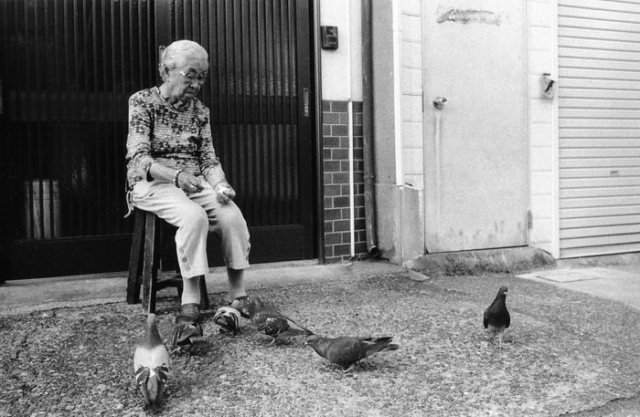 Alone Blackandwhite Casual Clothing Day Door Flooring Friendship Full Length Indoors  Leisure Activity Lifestyles Occupation Old Lady Pidgeons Real People Rear View Side View Sitting Standing Streetphoto_bw Streetphotography Togetherness Tokyo Wall Window