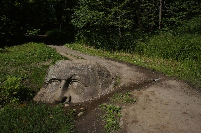 Stone head in