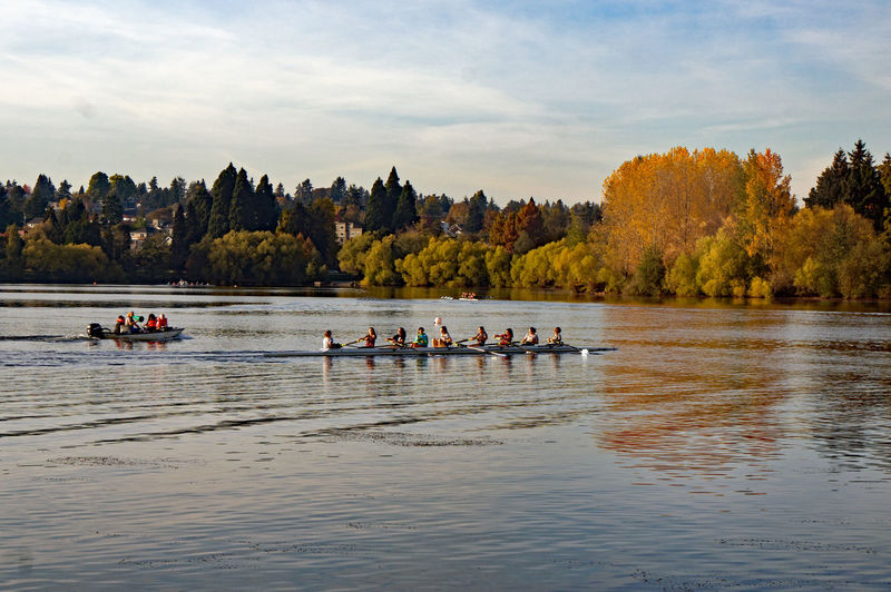 Fall rowing SeattleLife Boats And Water Fall Season Sport Muscle Powered Outdoor Activity Pacific Northwest  Crew Team Workout Activity Smooth Water Water Group Of People Nautical Vessel Tree Nature Real People Plant Lake Crowd Large Group Of People Beauty In Nature Leisure Activity Lifestyles Cloud - Sky Outdoors Rowboat Rowing Transportation Day