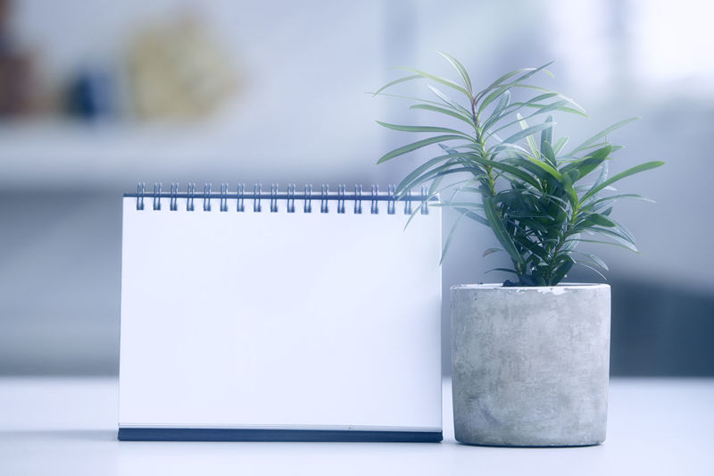 Close-up of spiral notebook by potted plant