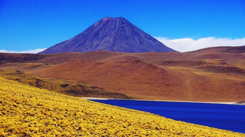 miscanti lagoon - atacama desert Miscanti Atacama Volcanoes Sky Blue Nature Scenics - Nature No People Land Tranquility Tranquil Scene Beauty In Nature Sunlight Day Environment Landscape Mountain Non-urban Scene Desert Outdoors Clear Sky