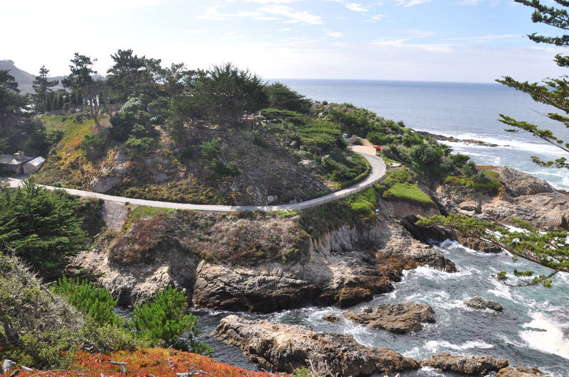 17 Mile Drive Beach Beauty In Nature Coastline High Angle View Horizon Over Water Idyllic Landscape Landscapes With WhiteWall Nature Outdoors Plant Road Rock - Object Rock Formation Scenics Sea Shore Tranquil Scene Tranquility Water USA
