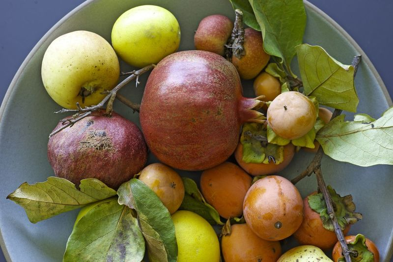 High angle view of various fruits in bowl