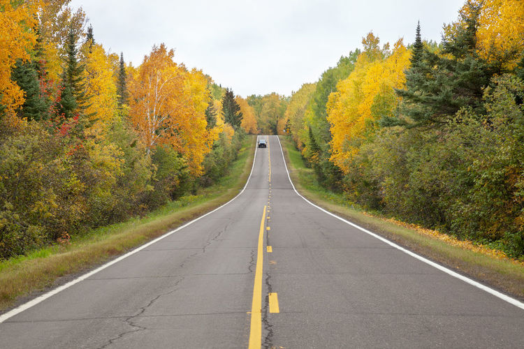 Highway in northern minnesota lined with trees in autumn color