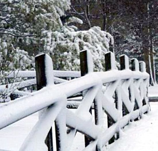 Wooden Fence Taking Photos Trees Snow Covered Car Photos By Jeanette Beautiful