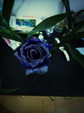 把爱深深藏在心底 Flower Bluelover