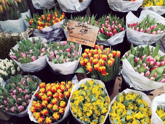 Flower Market Variation Farmer's Market Tulips Flora City Berlin Friedrichshain Fhain Boxhagenerplatz Boxi Spring Blumen Pflanze  Frühling Markt Wochenmarkt Tulpen