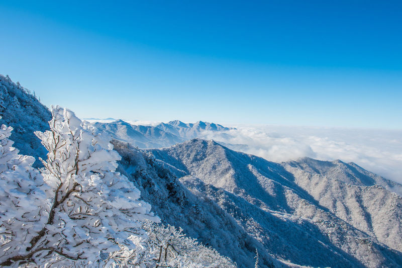 Deogyusan mountains in winter, Korea. Beauty In Nature Blue Clear Sky Cold Temperature Day Landscape Mountain Mountain Range Nature No People Outdoors Scenics Sky Snow Tranquil Scene Tree Wilderness Area Winter