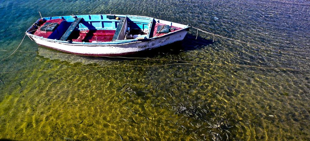 moored fishing boat Boat Colorful Fish Light And Shadow Nature Rippled River Rowboat Water
