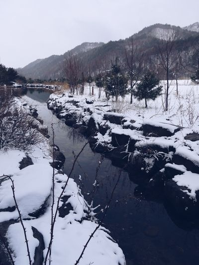 Sky Mountain Winter Beauty In Nature Nature Water Plant Cold Temperature Snow Day Scenics - Nature Outdoors