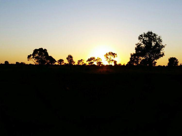 Stunning Sunset Taking Photos Sunset Sunset_collection Trees Australian Outback Landscape Nature_collection Outdoors Taking Photos 43 Golden Moments