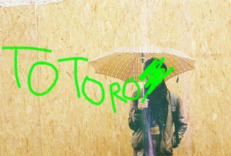 Rain Totoro