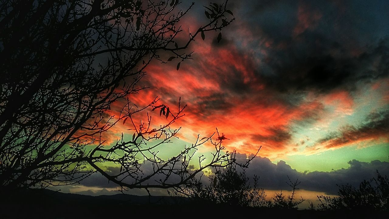 nature, tree, sunset, beauty in nature, orange color, tranquil scene, sky, scenics, silhouette, tranquility, dramatic sky, no people, outdoors, cloud - sky, landscape, mountain, rural scene, branch, bare tree, forest fire, night