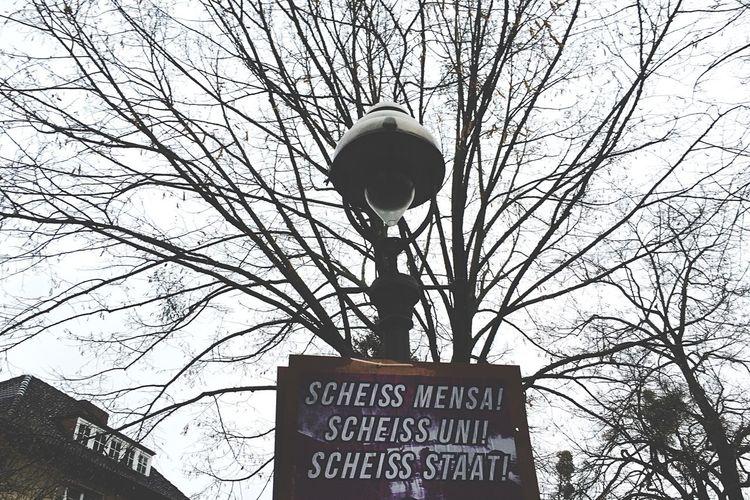 First Eyeem Photo University Student Deutschland Germany Tree Studenten Protestieren Plakat Campus Freie Universität Berlin