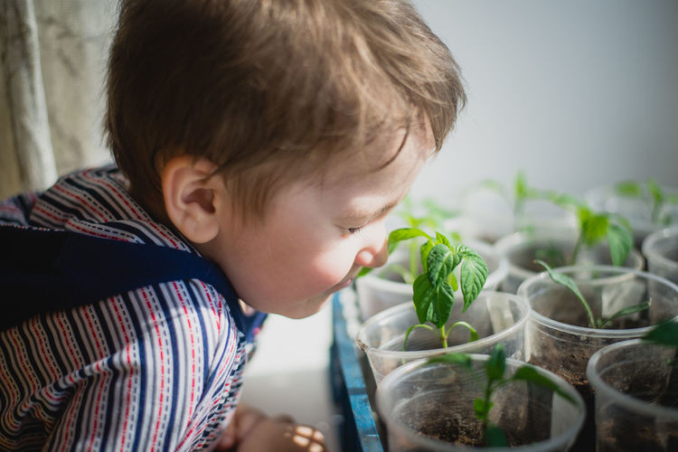 Side view of boy smelling plants