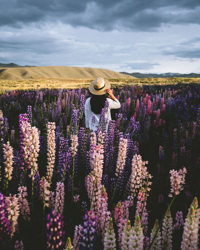 EyeEmNewHere Agriculture Beauty In Nature Cloud - Sky Farm Field Flower Flower Head Flowering Plant Growth Hat Land Landscape Lavender Lifestyles Nature One Person Outdoors Plant Purple Rural Scene Scenics - Nature Sky