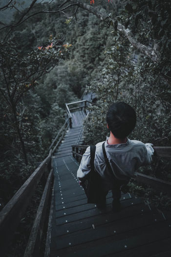 Nature Real People Men Bridge Tree Rear View Boys Child Day Outdoors Forest Childhood Track Railing Plant Footbridge Males  Lifestyles Full Length One Person Leisure Activity Beauty In Nature EyeEm Nature Lover EyeEm Selects EyeEm Best Shots