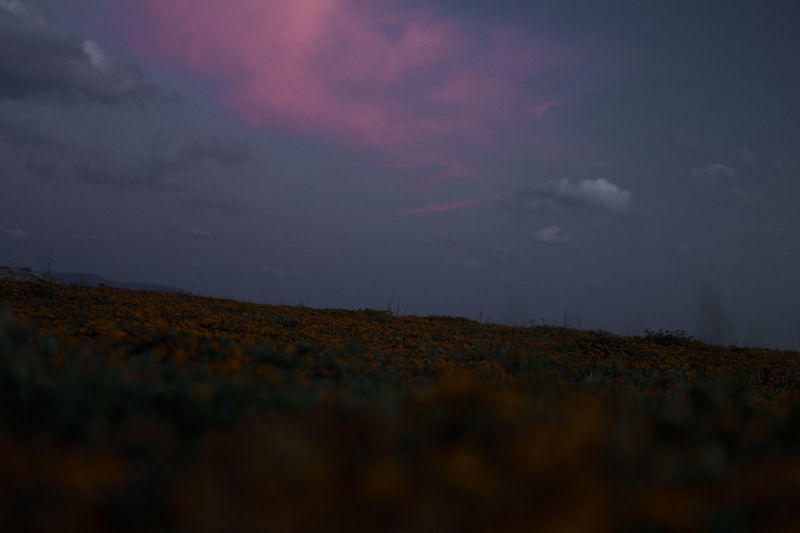 Sky Cloud - Sky Night Nature Environment Landscape Beauty In Nature Scenics - Nature Tranquility Dusk No People Outdoors Dark Tranquil Scene Overcast Land Storm Dramatic Sky Low Angle View
