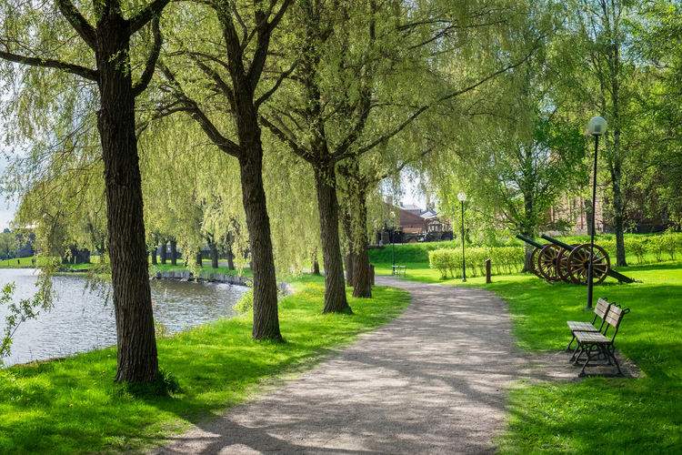 Scenic summer landscape with lake and idyllic paht at bright summer day in Finland. Plant Tree Grass Nature Seat Park Water Tree Trunk Bench Trunk Green Color No People Beauty In Nature Park Bench Tranquility Outdoors Day Finland Summer Sunshine Sunlight Landscape Lush Foliage Path Pathway