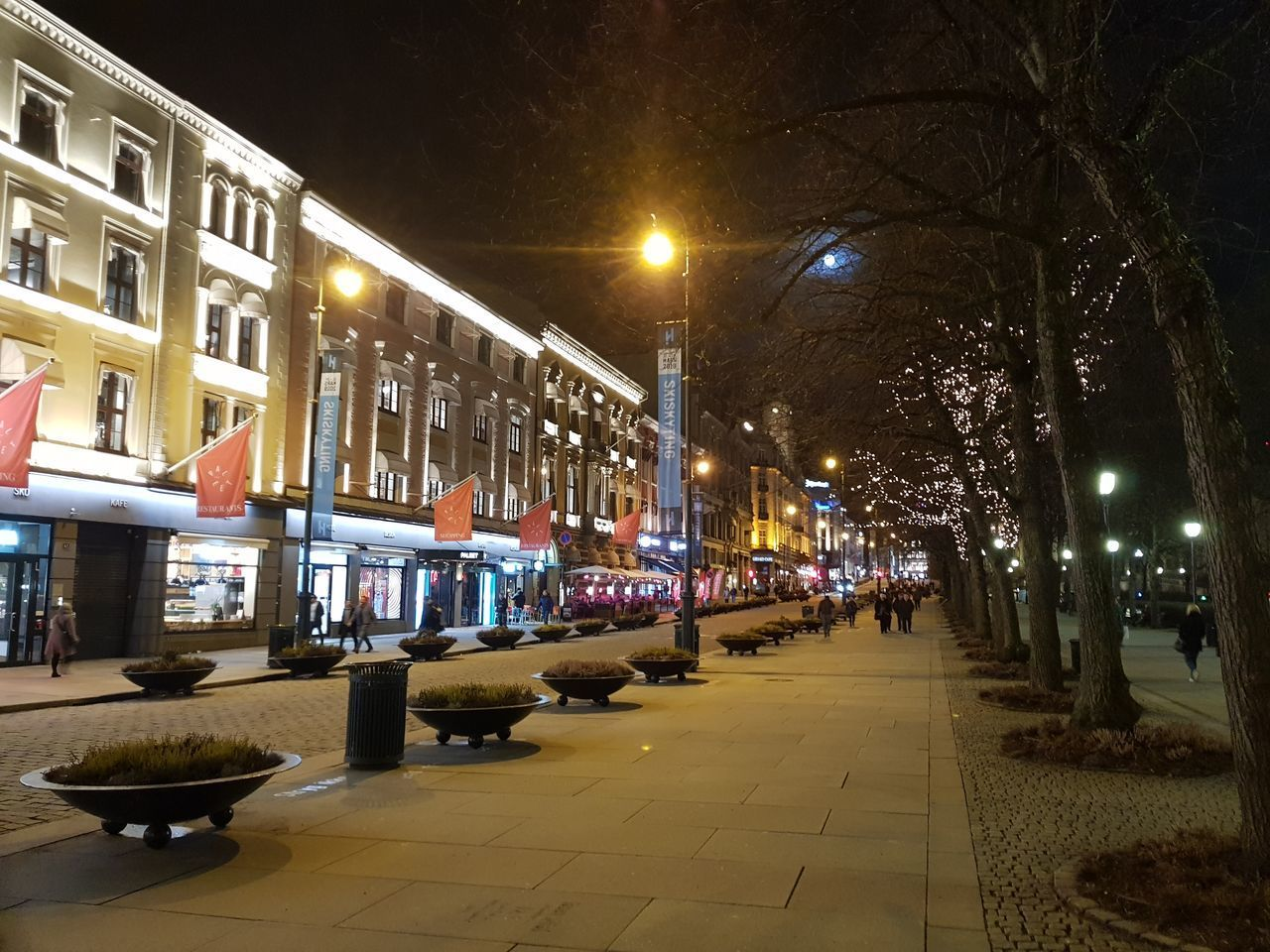 illuminated, night, architecture, built structure, building exterior, street, street light, city, lighting equipment, footpath, the way forward, direction, no people, transportation, building, nature, tree, outdoors, plant