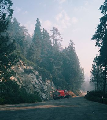 Protecting Where We Play the Kings canyon out look in California is one of the many areas being affected by wild fires and hundred of Brave firefighters from all over the country and the world are coming together to save these amazing national parks from the fires pray for them to be safe and for the fires to end quick 🙏🏼 true Heroes