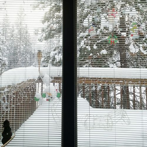 Through The Window Snow Snow Covered Snowscape Winter_collection Winterscapes Winter Wonderland Winter Trees Winter December 2015 Tree_collection  Snow Covered Trees Window Wintertime Windows Decks On The Deck Spokane Wa Its Cold Outside Window View EyeEm Tree Collection Pattern Pieces Pattern, Texture, Shape And Form Interior Views