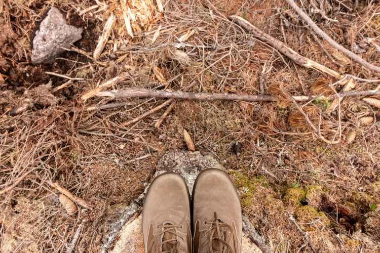 Directly above shot of shoes on rock