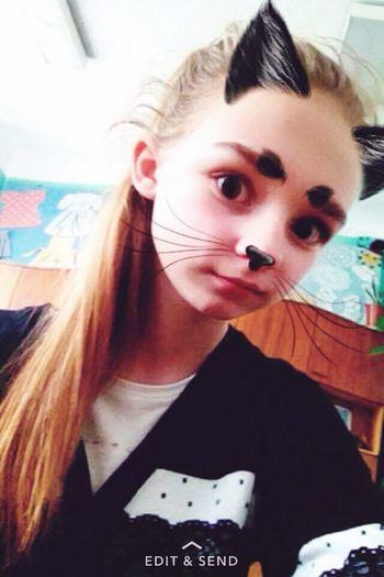 кот кошки котэ Котик Коты киця кицюня