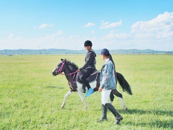 Sport Nature Grassland Lifestyles Horse Rider