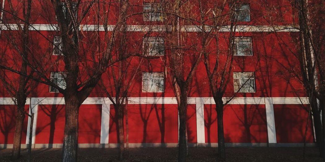 红 Red Building Exterior Autumn EyeEmNewHere Red Close-up Autumn Mood