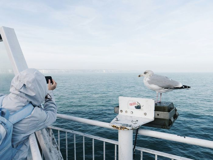 Hooded Person Photographing Sea While Seagull Perching On Railing Against Sky
