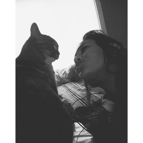 Cats are gonna rule the world someday ||| Baby Myeternallove Aintitfun