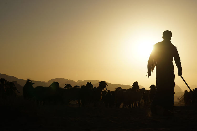 Adult Army Army Soldier Bedouin Horizontal Men Military Officer One Man Only One Person Only Men Outdoors People Person Sheep Shepherd Silhouette Sun Sunset Travel Travel Destinations Wadi Rum JORDAN War